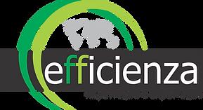 _Logo Efficienza Impo Expo V8 (1).png