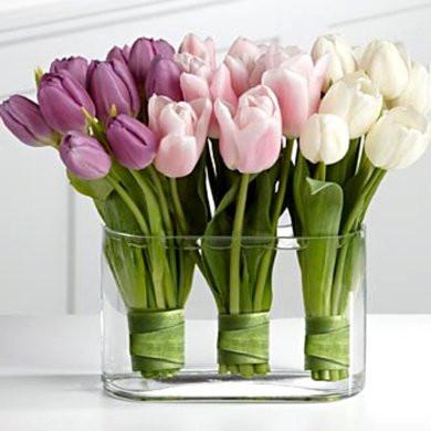 Как выбрать цветы #куни_в_Принцплаза