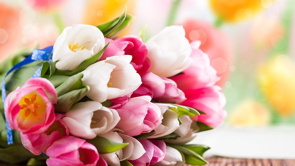 Как выбрать цветы #мебель_для_кухни_на_заказ