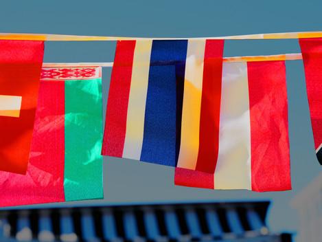 O que é Paradiplomacia?