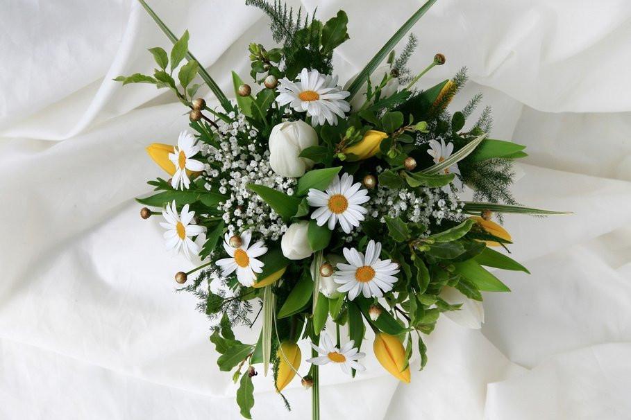 Как выбрать цветы #кухни_ярмарка_мебели_Москва