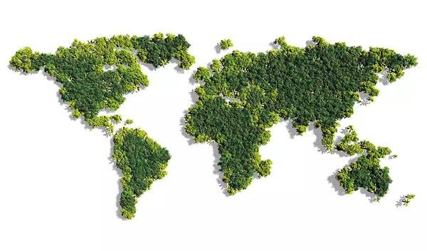 Le projet de la Grande muraille verte a été initié par le continent africain pour lutter contre le changement climatique.