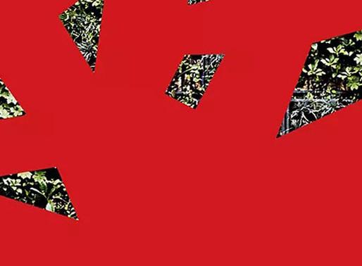 Soldes d'Hiver Timberland 2020 : une durée réduite à quatre semaines cette année.