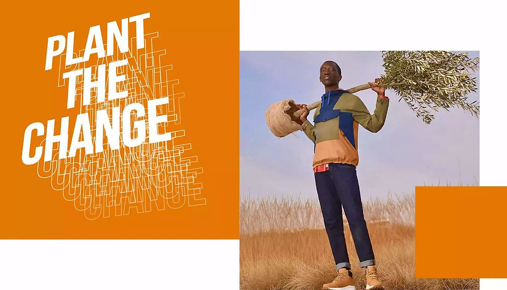 Plantez le changement en consommant de manière plus responsable