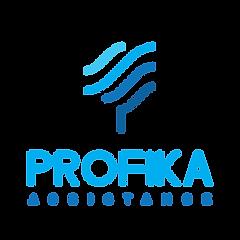 Profika_blue_Assistance_pion-kopia-300x3