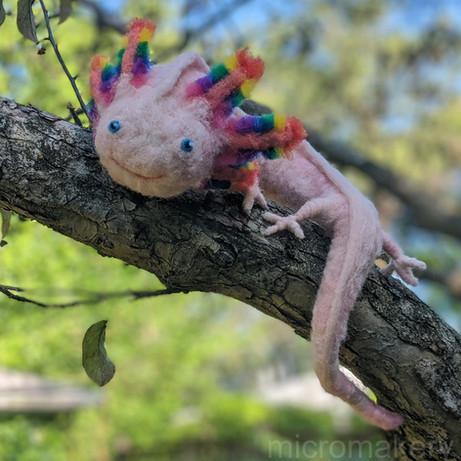 axolotl_portrait_i.jpg