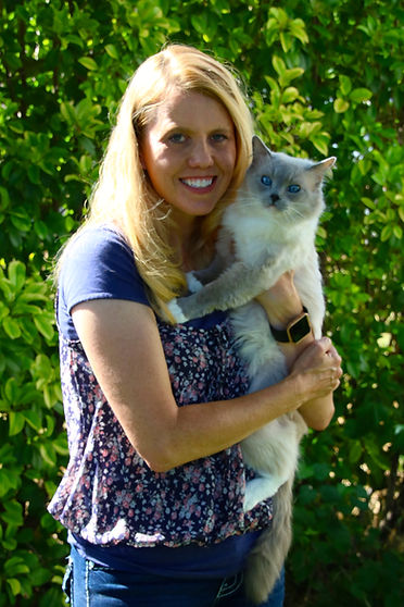 Ragdoll Cat Breeder