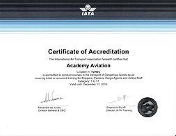Akademi Havacılık DGR - IATA-1.jpg