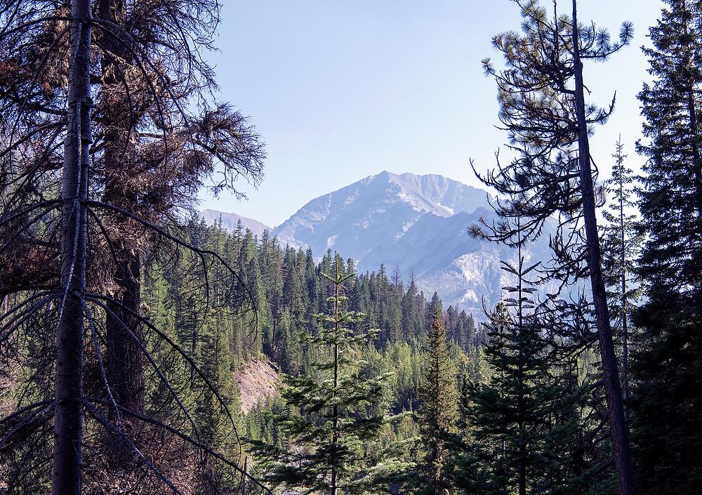 View from the Hurricane Creek Trail near Joseph in Northeastern Oregon