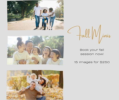 Canva template for photographers
