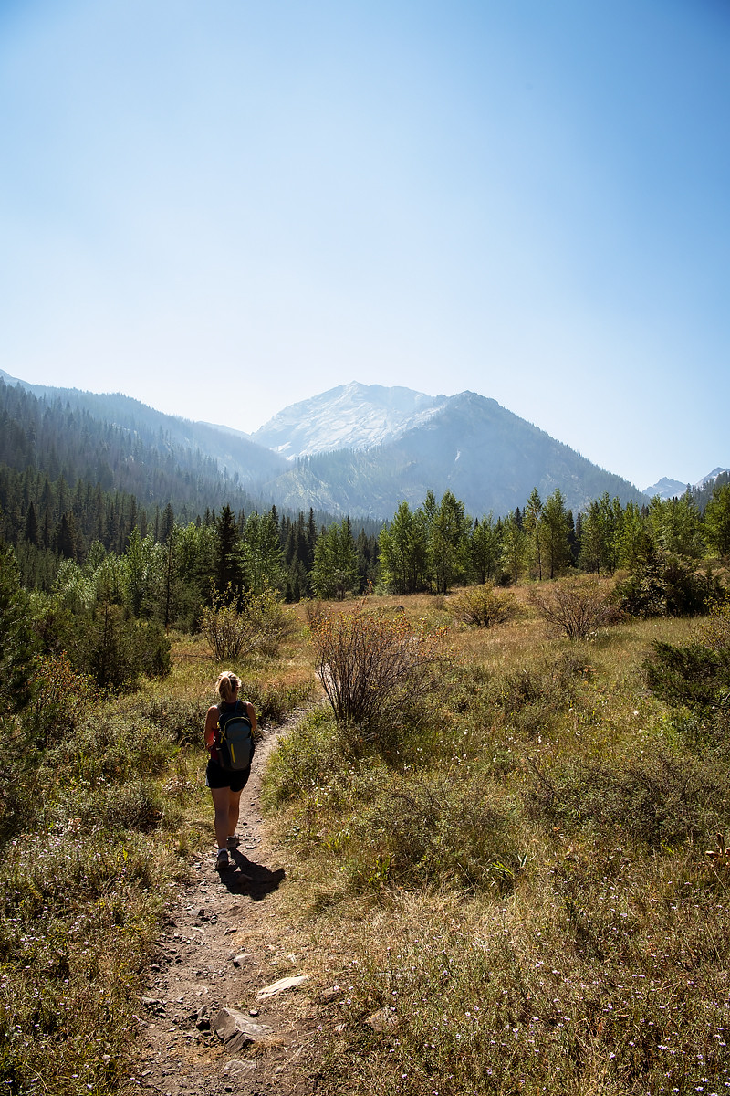Hiking through a meadow on Hurricane Creek Trail in the Wallowa Mountains