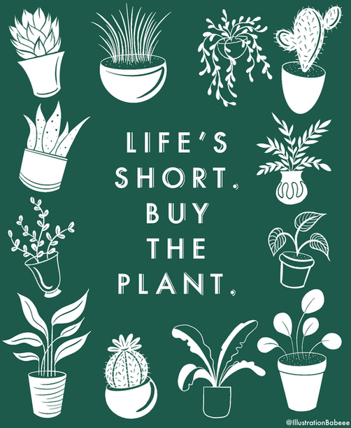 Life's Short... Buy the Plant