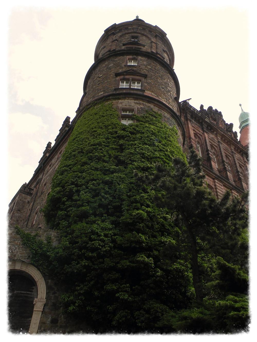 Jedna z wież Książa