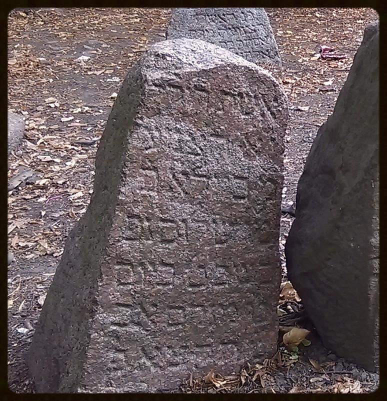 Beila córka Shaloma – zm 7/19/1831r