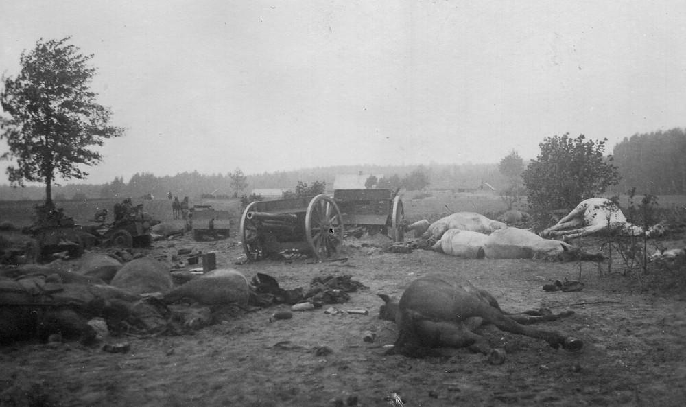 Krajobraz po bitwie pod Andrzejewem