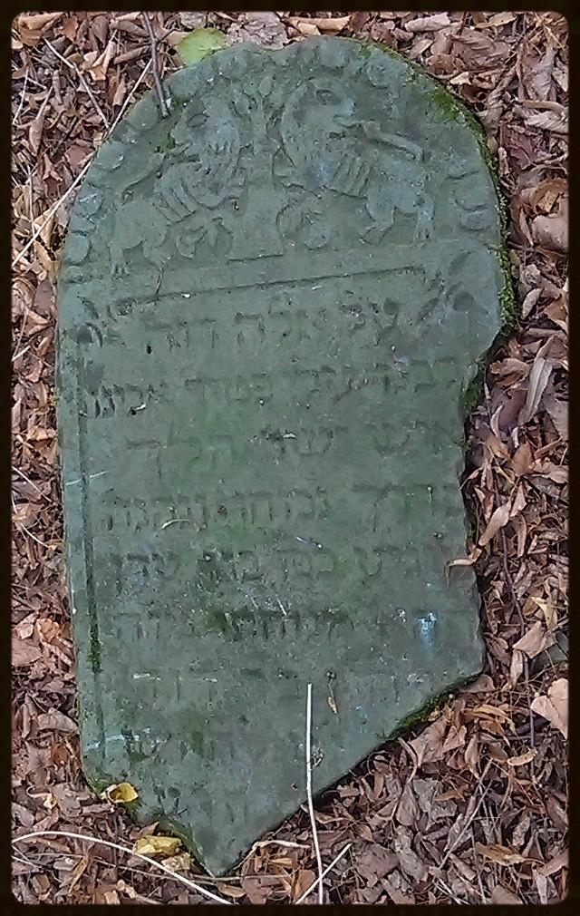 Elchanan – syn Davida – zmarł w roku 5675