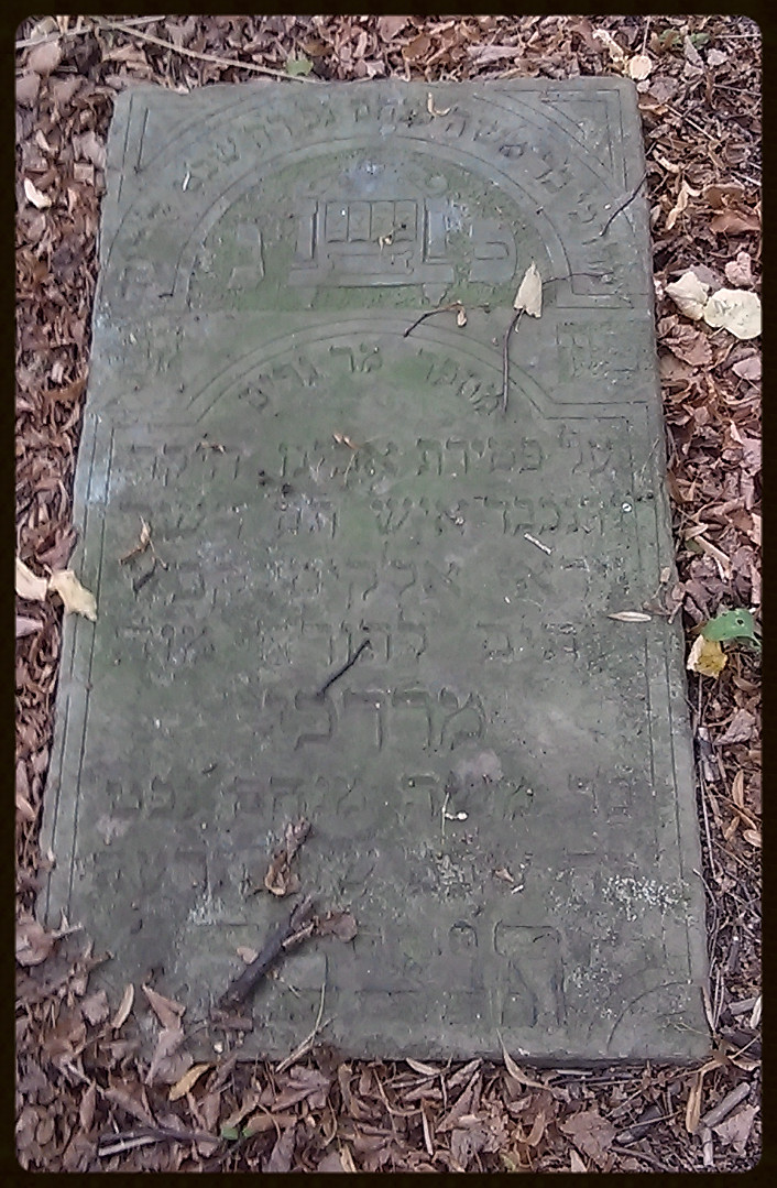 Mordechai – syn Moshe Menachema zmarł 1/28/1914r.