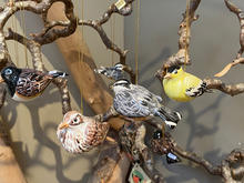 Assortment of Native Birds maiolica overglaze decoration each piece priced individually