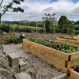 TEC Garden.jpg