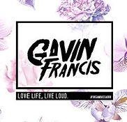 Logo DJ Gavin Francis