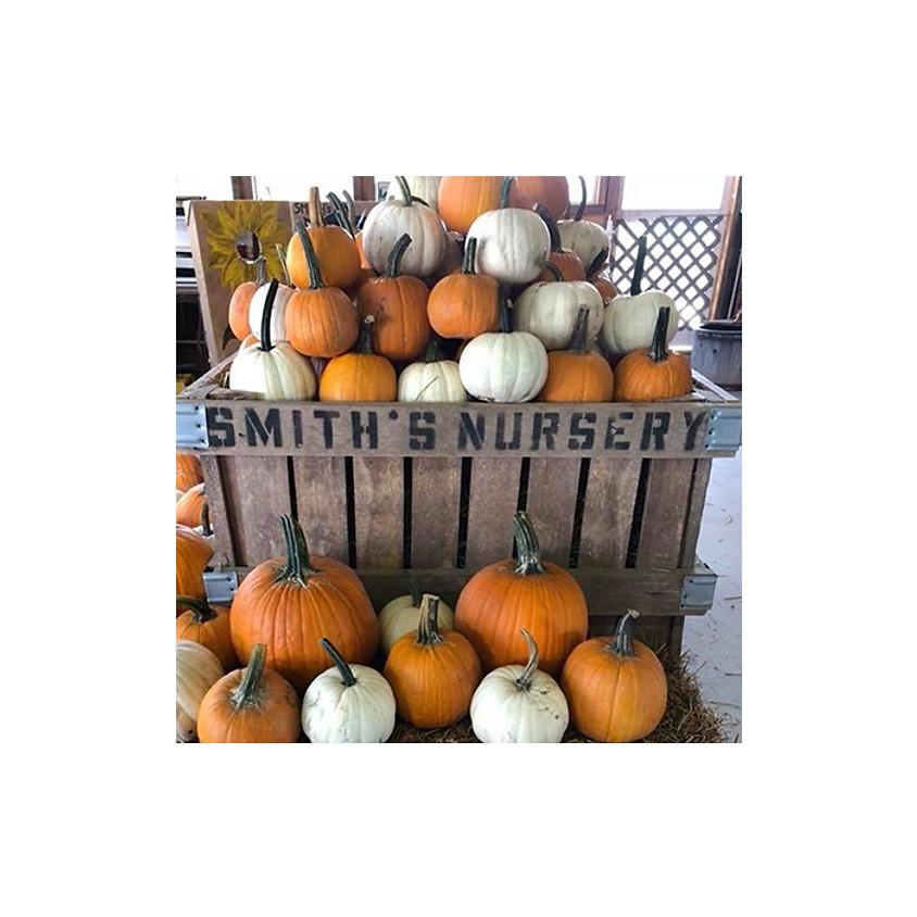 Smith's Nursery Fall Family Spirit Day!