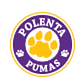Polenta Elementary Schools Website Link
