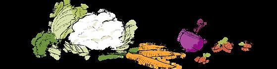 Evergreen Organic Logo