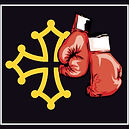 comité occitanie boxe