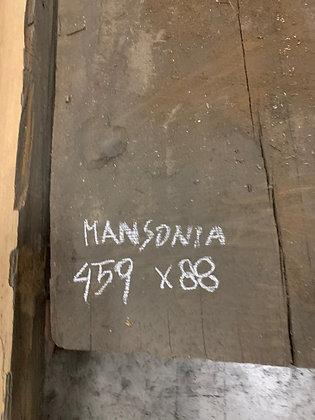 MANSONIA COPPIA