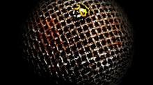 New Album 'Audiobug' Coming Soon!!!