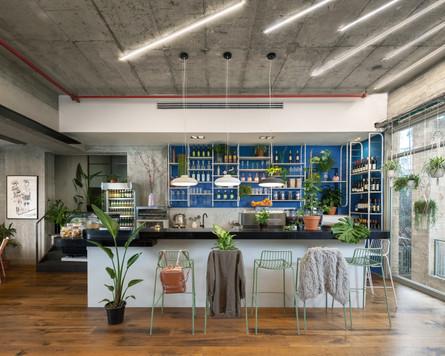 CafeSaga Design by Tamar Nemirovsky