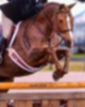 Tiki_jump6.jpg