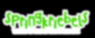 logo+website zonder springers.png