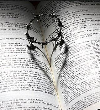Thorns and Heart.jpg