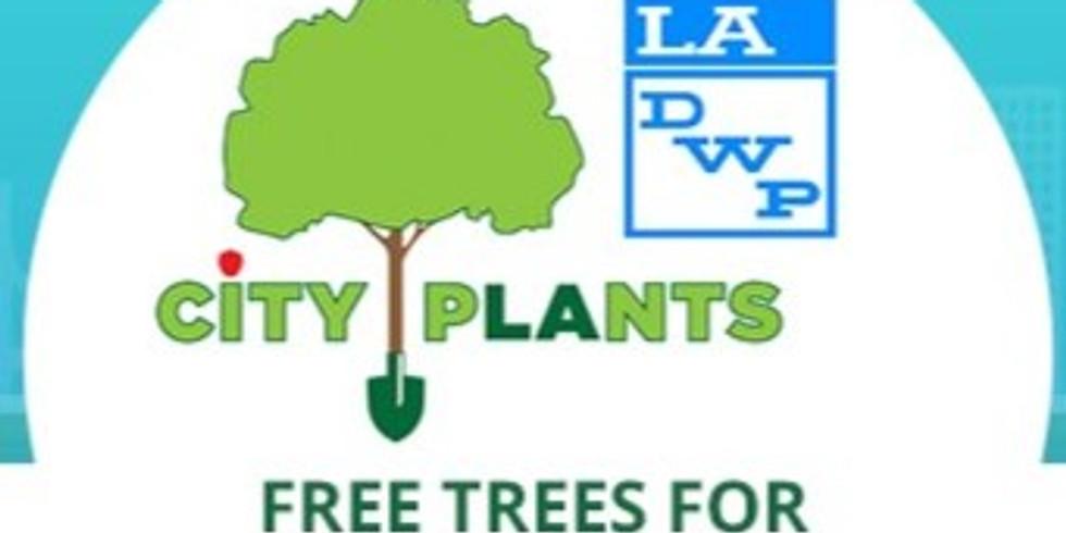 Tree Adoption