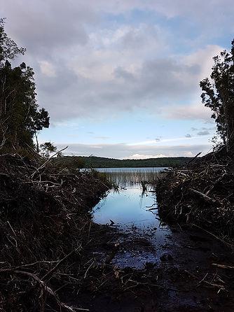 Lago 1-ok.jpg