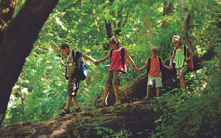 Parque Natri Paseo por el bosque.jpg