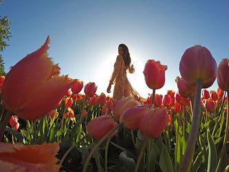 seila gopro tulips.jpg