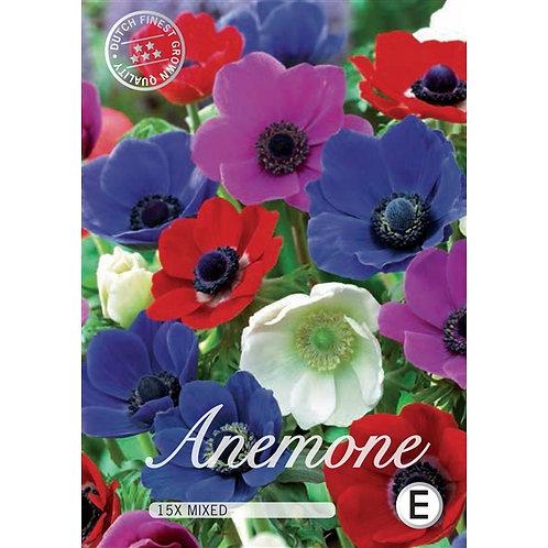 Anemona mix