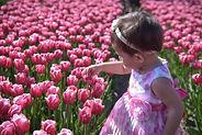 baby_girl_tulips.jpg