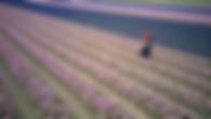 Screen Shot 2020-01-26 at 22.47.50.png