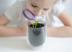 Young girl studies small plant in elemen
