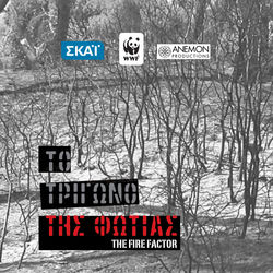 The Fire Factor