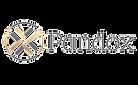 logo%20Pandox_edited.png