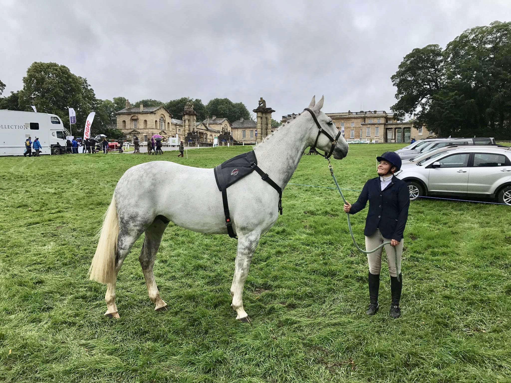 Equi Travel Safe Bramham