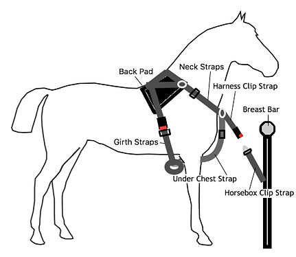 Fitting And Installing The Equi Travel Safe