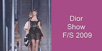 Dior Show FS 2009.jpg