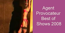 agent prov Best of Shows 2008.jpg