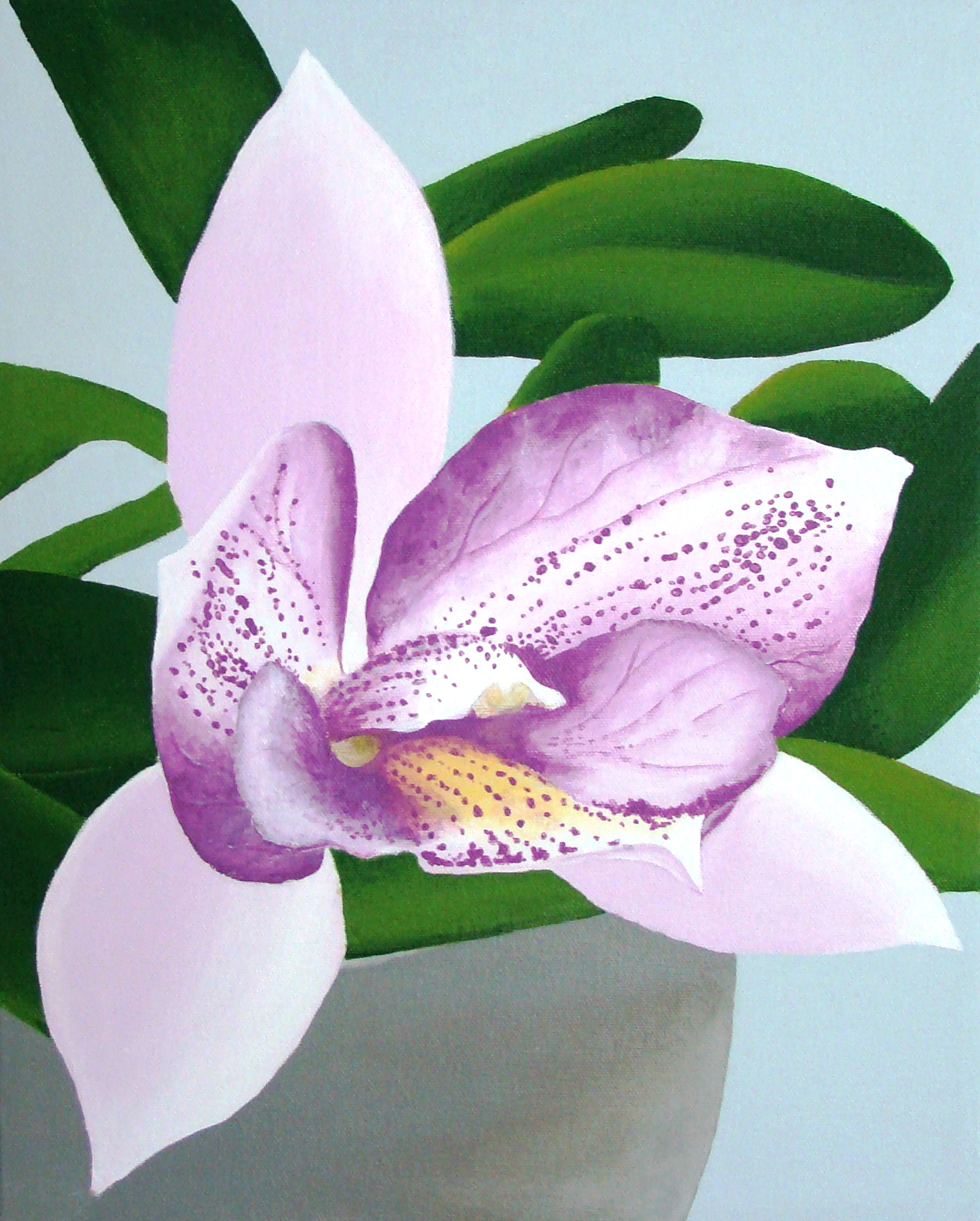 lisa`s orchids
