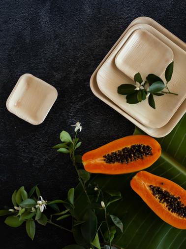Organic Tableware by Earthware